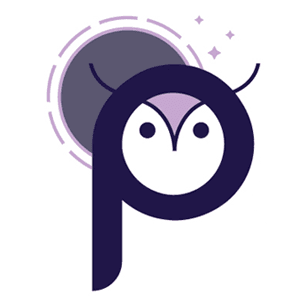 Night Owl logo showing the letter P fashioned as the face of an owl